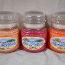 HARVEST Fall SCENTED Jar CANDLE Cinnamon Pumpkin Spice NATURAL WAX Mia Bella's