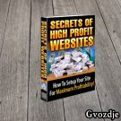 Secrets Of High Profit Website E-Book PDF (PLR Rights) Free Shipping