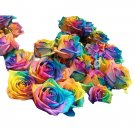 20pcs Rose Seeds 5 Colors Petals Plants Home Garden Flower