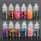 12X Mini Bottle Glitter Nail Art Powder Tips Decoration Set