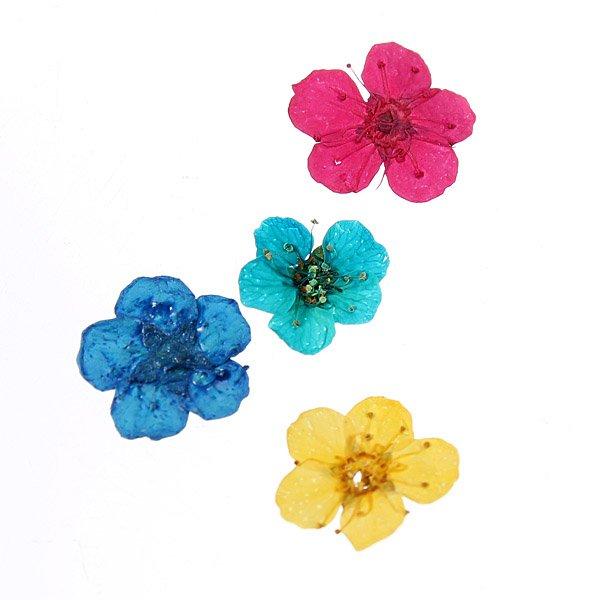 Dry Flower Acrylic UV Gel Nail Art Decoration Wheel DIY
