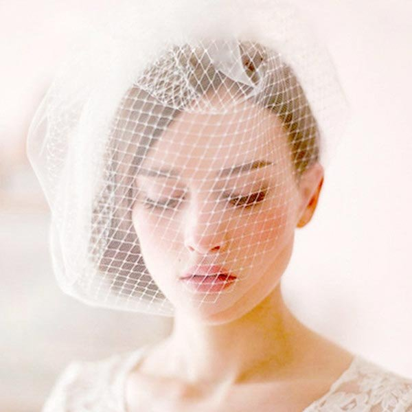 Vintage Elegant Bridal Wedding Fascinator Birdcage White Veil Netting