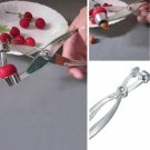 Aluminum Cherry Pitter