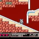 Tiny Toon Adventures 2 Trouble in Wackyland NES