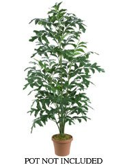 Silk Fishtail Palm Tree
