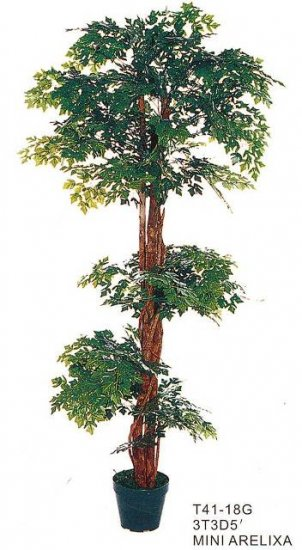Mini Arelixa Tree