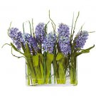 Hyacinth w/Rectangle Glass Planter