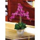 Triple Stem Phalaenopsis Silk Orchid Flower Arrangement -  Orchid