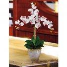 Triple Stem Phalaenopsis Silk Orchid Flower Arrangement -  White
