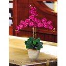 Triple Stem Phalaenopsis Silk Orchid Flower Arrangement -  Beauty