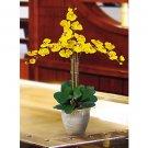 Triple Stem Phalaenopsis Silk Orchid Flower Arrangement -  Gold