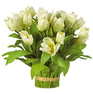 Tulips Bundle Arrangement