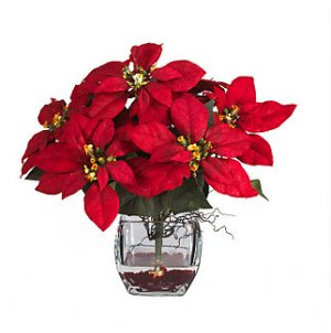 Poinsettia w/Cube Liquid Illusion