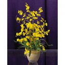 Dancing Lady Silk Orchid Arrangement (Yellow)