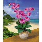 Double Stem Phalaenopsis Silk Flower Arrangement (Orchid)