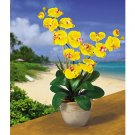 Double Stem Phalaenopsis Silk Flower Arrangement (Gold)