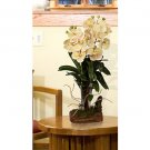 Large Vanda w/Root Base Silk Orchid Arrangement (Green Peach)
