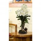Large Vanda w/Root Base Silk Orchid Arrangement (Cream)