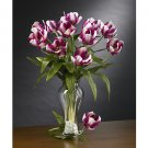 Parrot Tulips Stems (12 Stems) - Raspberry