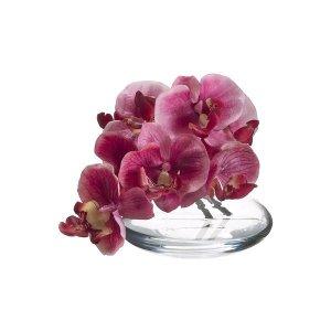"5.5"" Phalaenopsis (glass) -  wedding centerpieces"