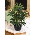 Raphis Silk Palm Tree w/Black Vase 20 in