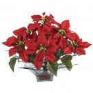 Poinsettia w/Square Glass Vase