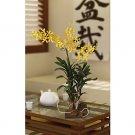 Vanda w/Root Base Silk Orchid Arrangement - Yellow