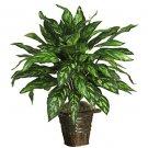 Silver King w/Wicker Vase Silk Plant
