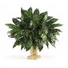 Silver King w/Decorative Basket Silk Plant