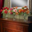 Ranunculus w/Champagne Vase (Set of 3)