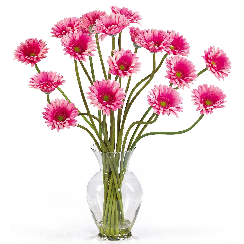 Gerber Daisy Liquid Illusion - Pink