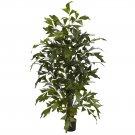 4.5' Fishtail Palm Silk Tree