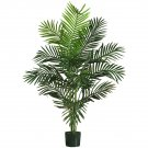 5' Paradise Palm Silk Tree