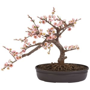Cherry Blossom Bonsai Silk Tree