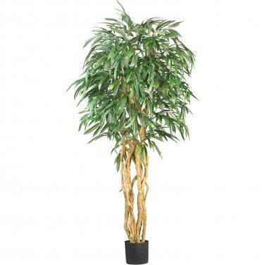 6' Weeping Ficus Silk Tree