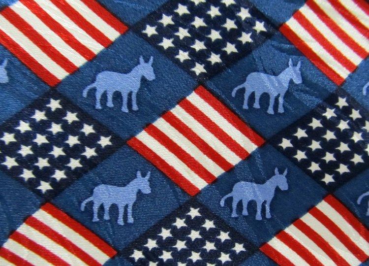 Democrat Necktie Mens Tie Donkey Politics Support Vote Red White Blue Flag Silk 56
