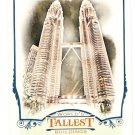PETRONAS TOWERS 2012 Topps Allen & Ginter World's Talllest Buildings INSERT Card #WTB3 Baseball