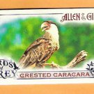 CRESTED CARACARA 2015 Topps Allen & Ginter Birds of Prey INSERT Mini Card #BP-6 FREE SHIPPING