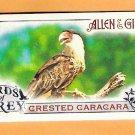 CRESTED CARACARA 2015 Topps Allen & Ginter Birds of Prey INSERT Mini Card #BP-6 FREE SHIPPING
