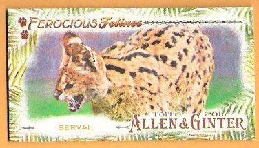 SERVAL 2016 Topps Allen & Ginter Ferocious Felines INSERT Mini Card #FF-12 Baseball FREE SHIPPING