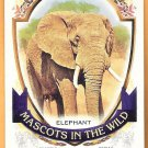 ELEPHANT  2016 Topps Allen & Ginter Mascots In The Wild INSERT Card #MIW-8 OAKLAND A'S Baseball 8