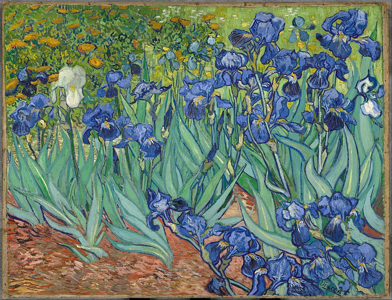Irises-Oil on canvas paintings-Vincent Van Gogh-reproduction