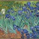 Irises-Oil on canvas paintings-Vincent Van Gogh-reproduction