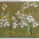 Vintage Needlework Field Daisy Wild Flowers Modernist Daisies White Margarite