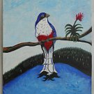 Vintage Painting Wild Red Belly Bird Orchid Everglades Ornithogy Folky Ramirez