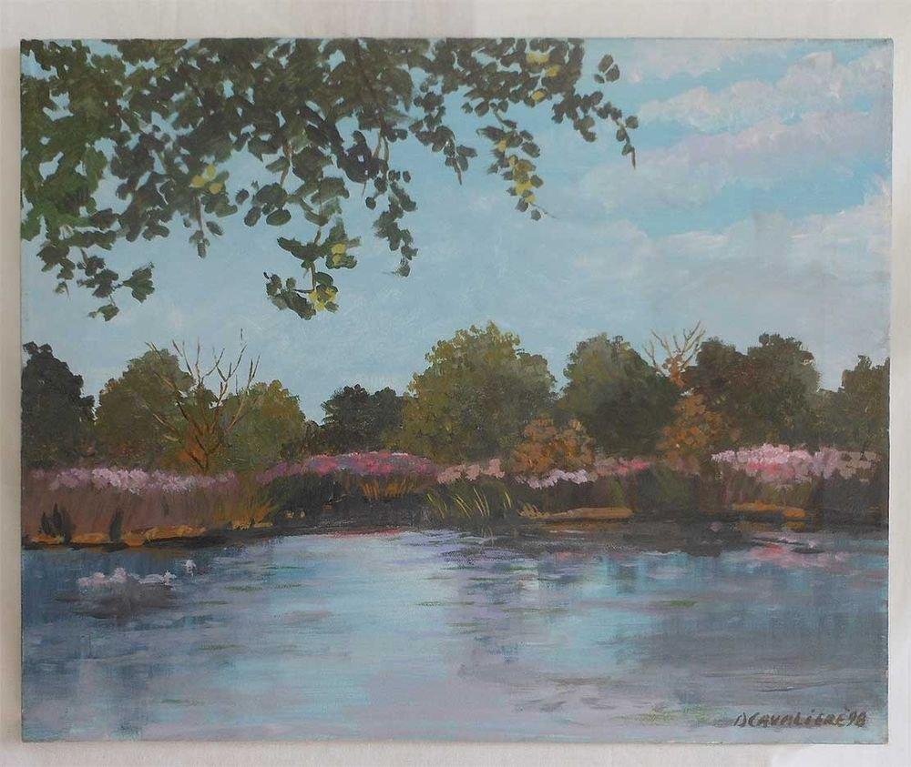 Ducks Ornithology Vintage Original Oil Painting Landscape Pond  D Cavaliere