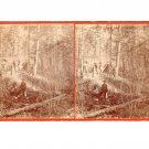 Stereoview Golden Gate Camp Western Cowboy Camp In Woods Tent Burro Shovel Tools