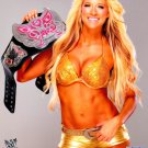 Kelly Kelly WWE Sexy Hot Girl 24x18 Print Poster