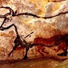 Cave Paintings Lascaux Ancient Bull Taurus Art 16x12 Print POSTER