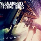 Noel Gallagher S High Flying Birds Death Of You And Me 32x24 Print POSTER